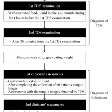 Flow Chart Of The Trial Tds Tongue Diagnosis System