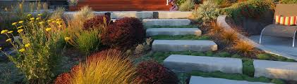 Small Picture Dig Your Garden Landscape Design San Anselmo CA US 94960