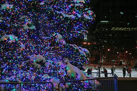 Tree Lighting in Grand Rapids