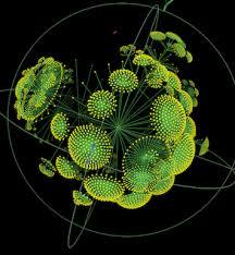 Resultado de imagen de Sistemas complejos