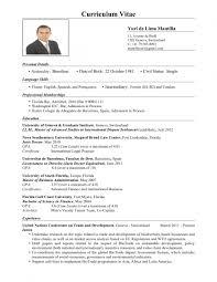 professional resume language skills resume languages examples