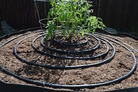 drip irrigation for beginners blog