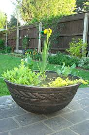Unwins Kitchen Garden Herb Kit Blog On Creating An Easy Care Patio Bowl Pond