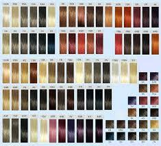 Ion Creme Color Chart
