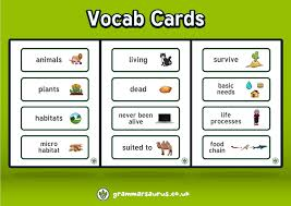 vocab cards with pictures vocab cards ad grammarsaurus