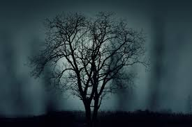 Image result for dark