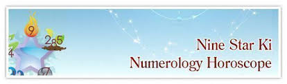 Birth Chart Future Reading Find Out How Your Chinese Astrology Birth Chart Can Affect