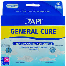 Api General Cure 10 Powder Packet Aquatic Treats Fish Disease Free Ship In Usa 317163160152 Ebay