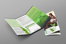 Unicity Matcha Energy & Focus Brochure - Amber Media Solutions