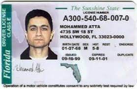 Illegal Right And Create They Speak For Driver's Problems Immigrants License The