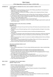 Financial Senior Consultant Resume Samples Velvet Jobs