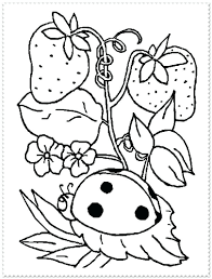 Free Spring Coloring Pages Chic Design Animal Printable Realistic