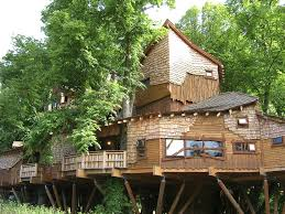 The Best Tree House Ever  YouTubeCoolest Tree Houses