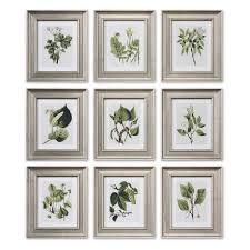 uttermost leaf botanical study framed wall art set of 9 on botanical wall art set of 2 with botanical wall art elitflat