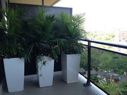... Cheap Large Planters Large Outdoor Flower Pots Large Planters Outside  Cheap: stunning cheap ...