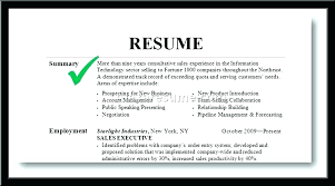 Resume Summary Samples New Resume Template Example Of A Resume Summary Sample Resume Template