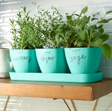 you can plant herbs in virtually any container so long as it has some type of drainage and something to protect the surface underneath such as a saucer or