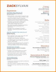 50 Best Of Email Marketing Resume Sample Resume Writing Tips