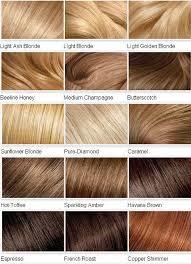 Caramel Brown Hair Color Chart I Like Caramel And Butterscotch Blonde Hair Shades Hair