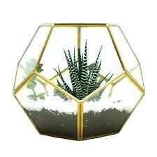 glass terrarium brass pentagon regular dodecahedron garden home wall decoration