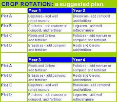Crop Rotation Chart The Basics Of Crop Rotation