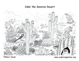 desert coloring pages printable ecosystem coloring pages desert habitat coloring pages coloring page for kids kids desert coloring pages