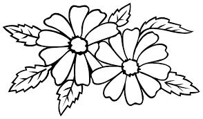 Floral Coloring Pages Jokingartcom