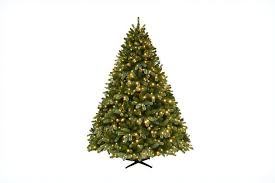 national tree company dunhill fir trees 10 ft l35