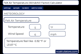 Felt Air Temperature Calculator