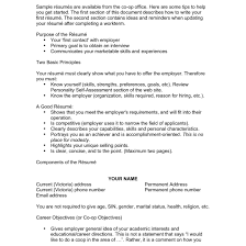 Resume Objective Tips Tips For Resume Objective Fungramco 58