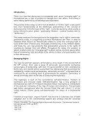 democracy essay liberal democracy non governmental organization