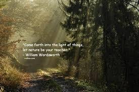 Best Nature Quotes Impressive Quotes Nature Best Inspirational Quotes Images Short Famous