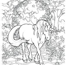rainbow unicorn coloring pages inside out