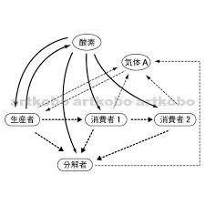 Web教材イラスト図版工房 理06石川k06
