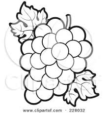 grapes clipart black and white. royalty grapes clipart black and white