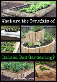 what are the benefits of raised bed gardening