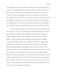 sample essay about family how to write a good definition essay my essay biography examples inspiring