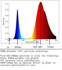 Vanq 600w Led Grow Light Full Spectrum For Autoflower