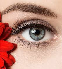 5 Most Beautiful And The Rarest Eye Colors Inkbeau
