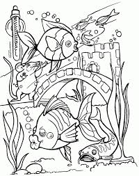 Small Picture Coloring Pages Tropical Fish Coloring Home