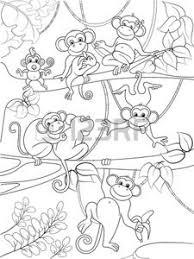 Monkey Play Foto Royalty Free Immagini Immagini E Archivi Fotografici