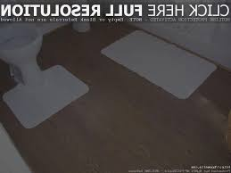 Can U Put Laminate Flooring In Bathrooms   Carpet Vidalondon