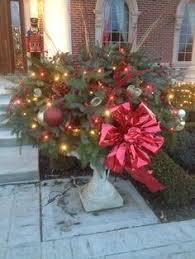 Best 25 Alpine Tree Ideas On PinterestSherwood Forest Christmas Trees