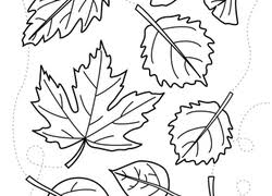 Small Picture Preschool Fall Worksheets Free Printables Educationcom