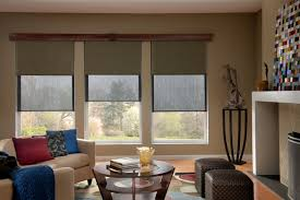 shades for living room. solar / roller dual shades contemporary-living-room for living room p