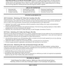 Resume Template : Online Resumes Portfolio Functional With Free 85 ...