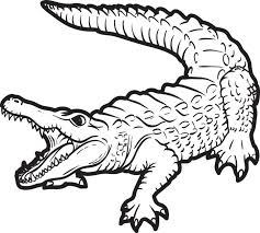 Small Picture Free Printable Alligator Coloring Page for Kids 2