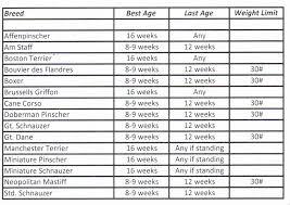 Doberman Weight Chart Competent English Mastiff Puppy Weight Chart English Mastiff