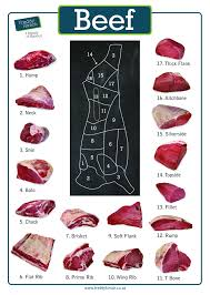 Human Meat Cuts Chart Cut Out The Confusion When Choosing Your Beef