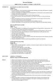 Services Planner Resume Samples Velvet Jobs